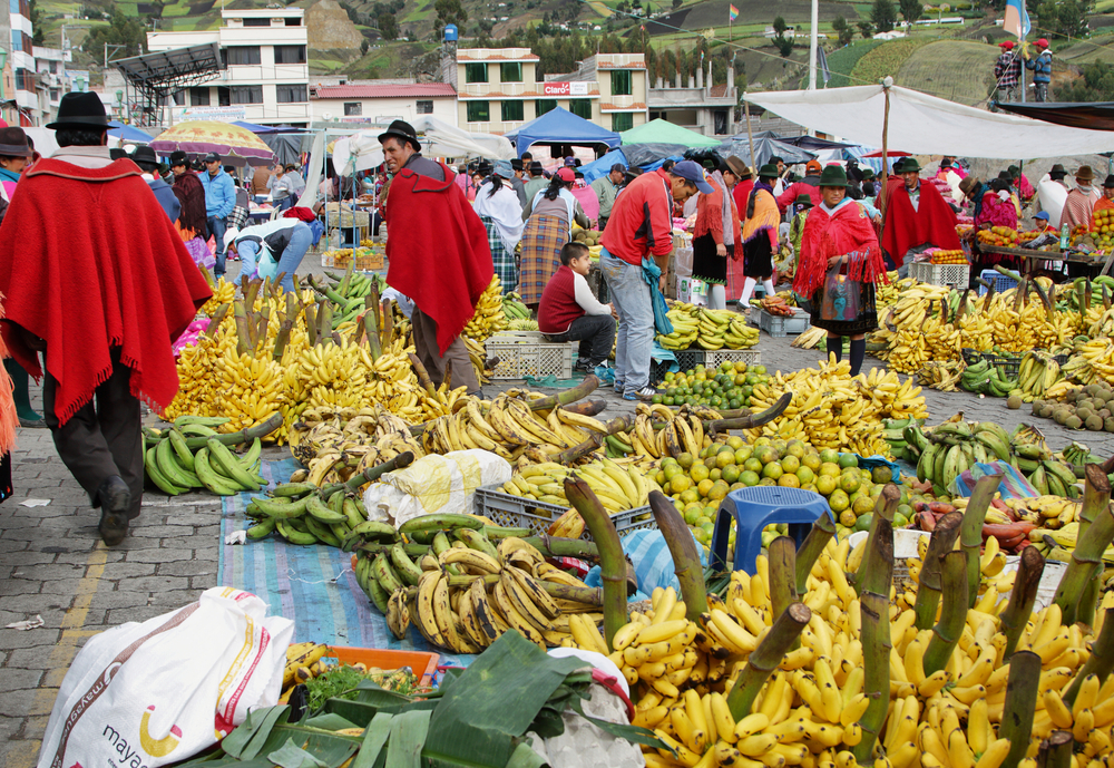 Spanish and French MEPs on collision course with Commission over Ecuador banana stabilization mechanism
