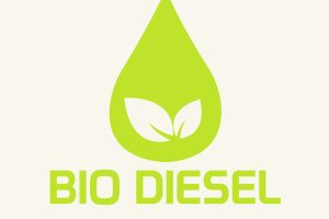 Council leaves EU Argentina biodiesel duty plans in limbo