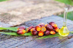 EU duties on Indonesian biodiesel break rules, WTO says