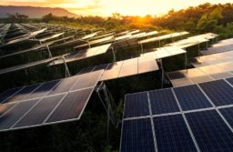 WTO: EU wants US to explain 'safeguard' on solar imports