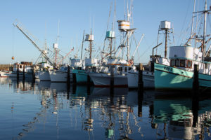 File image of fishing boats in harbour