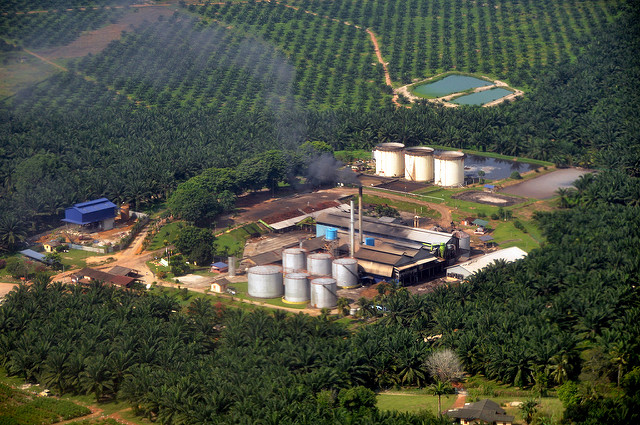 Aerial view of a Malaysian palm oil factory © Marufish