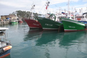 Optimism over the prospects of any major breakthrough on fisheries is limited