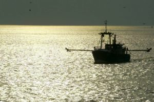 India is arguing for developing countries to be given a global exemption from subsidy provisions for all fishing which takes place in that country's territorial waters