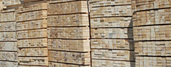 Timber © David Wright