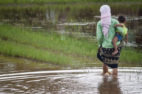 TDI series: Rice - The EU's first 'poorest country' import safeguard