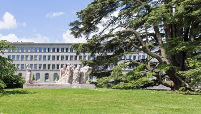García-Bercero: Africa critical to successful WTO overhaul