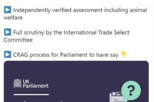 UK parliament given limited powers of scrutiny over new FTAs